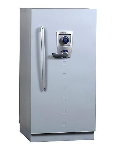 armoire-de-securite-Armoire Forte Ignifuge Informatique Fichet Bauche Diva 250 Mxb