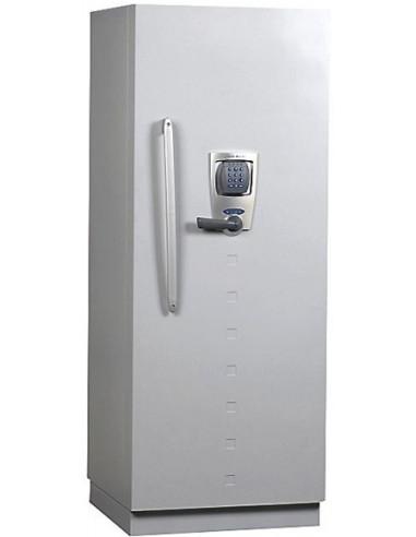 armoire-de-securite-Armoire Forte Ignifuge Informatique Fichet Bauche Diva 350 Nectra Basic